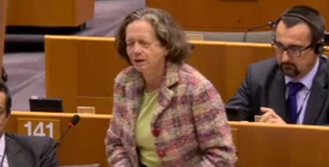 Pervenche Berès :  la conférence de Paris doit nous servir pour mettre en place l'Union de l'énergie et la transition écologique