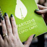 European Green Deal : nous attendons maintenant des actes