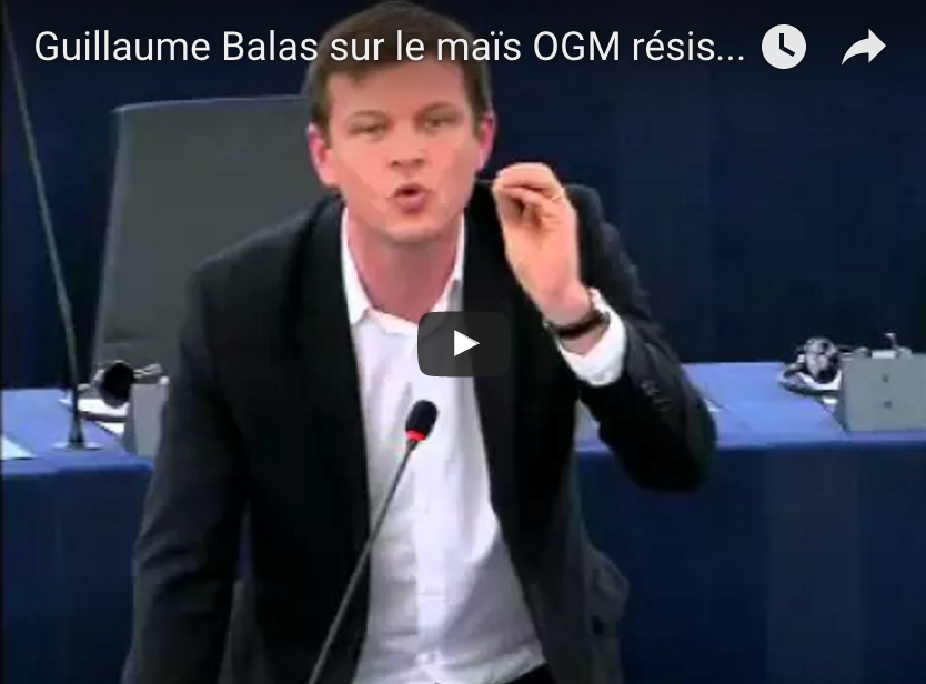 Guillaume Balas sur le maïs OGM résistant au roundup : Il y a là un incroyable déni démocratique