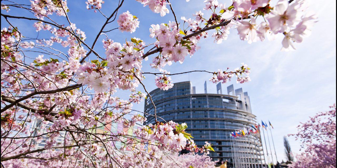 Accord sur le commerce des services (ACS-TiSA) : le cours des négociations doit radicalement changer