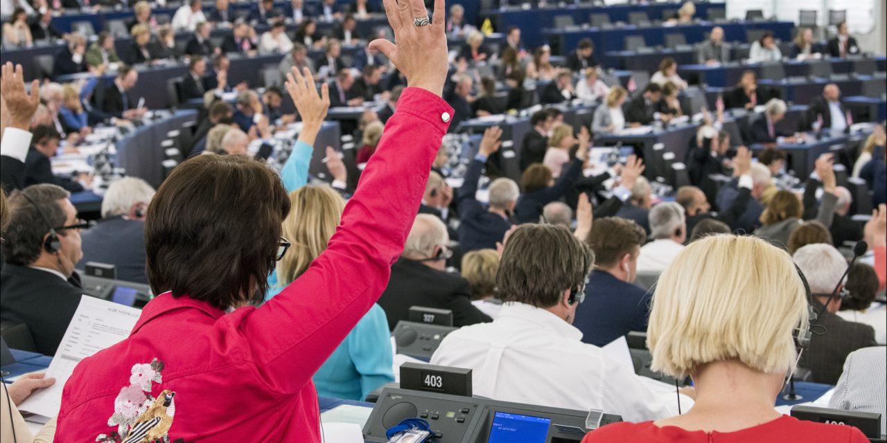 Élections européennes de 2019 : les idéaux et les intérêts particuliers