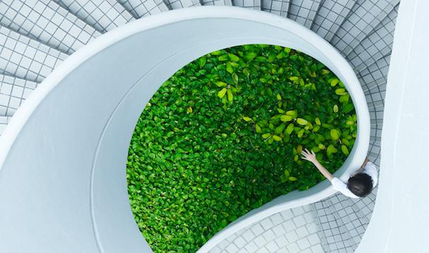 Le Parlement européen exige une économie neutre en carbone, durable et non toxique d'ici 2050